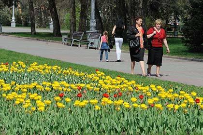 ВВолгограде лучший городской парк получит 15 млн руб.