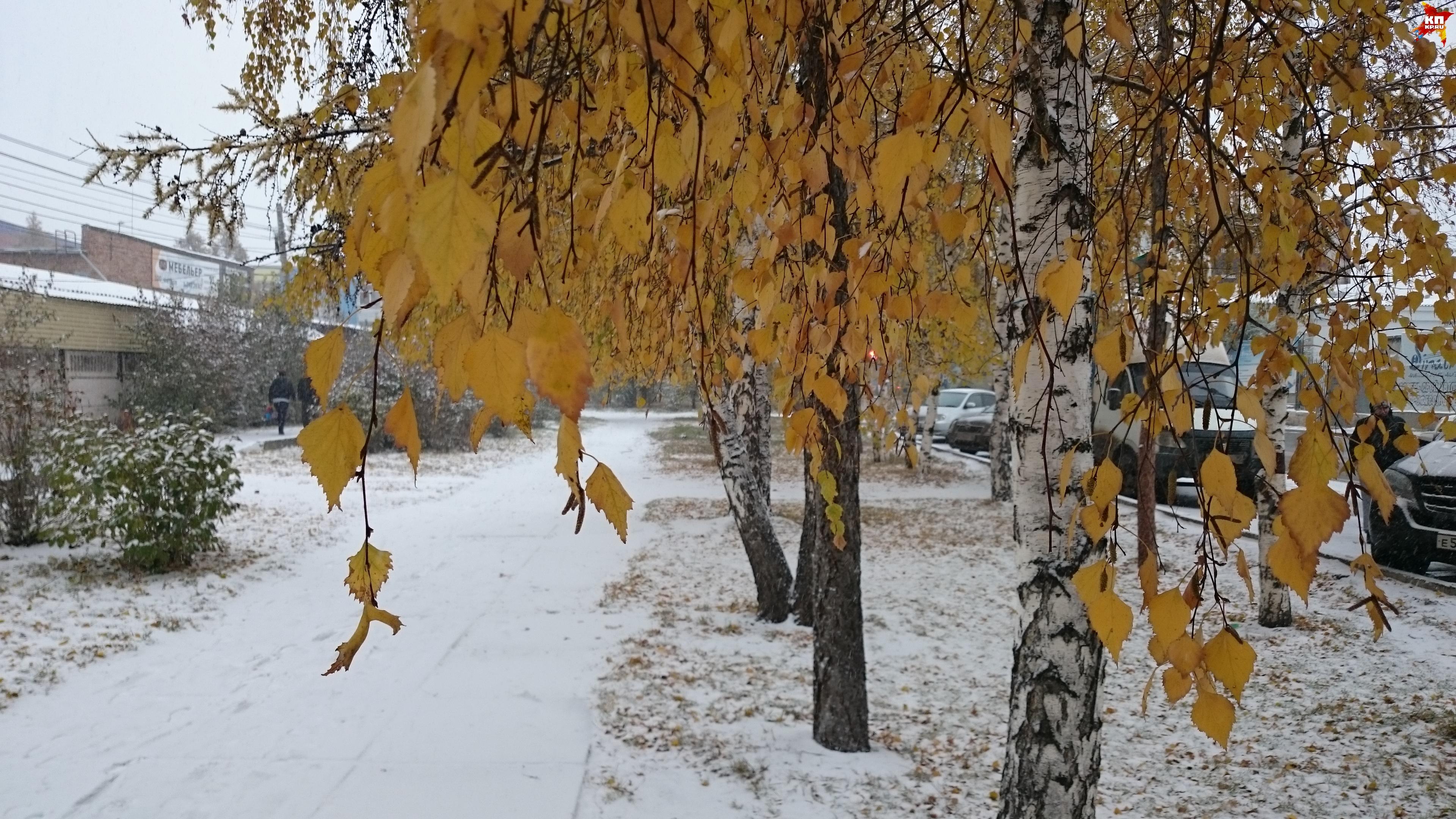 ВКрасноярске предполагается прохладная иснежная неделя