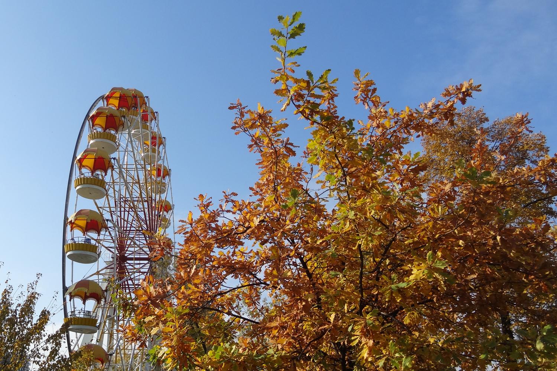 аттракционы фото парка танаис в воронеже