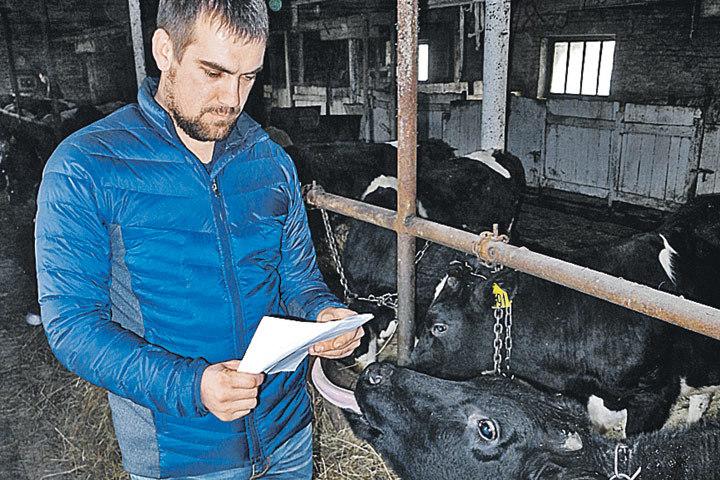 За доблестный крестьянский труд Ивана потащили в суд 9878813