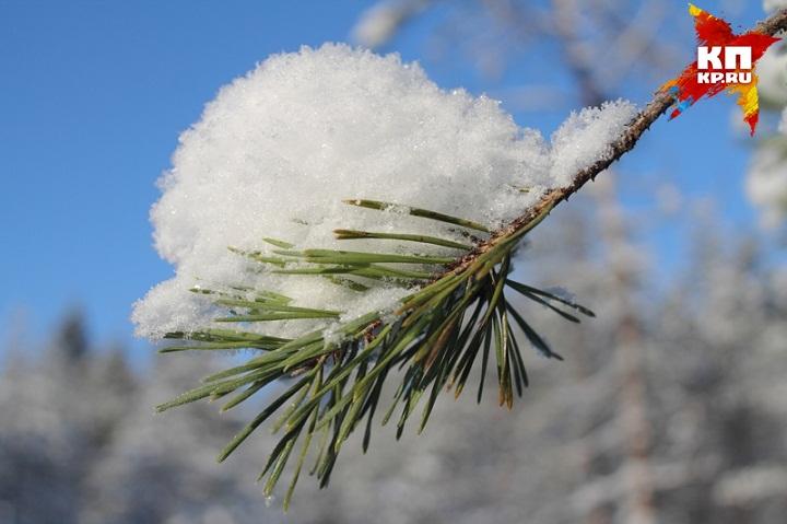 На следующей неделе в Ижевске потеплеет до +1 градуса. Фото: russkij-sever.livejournal.com