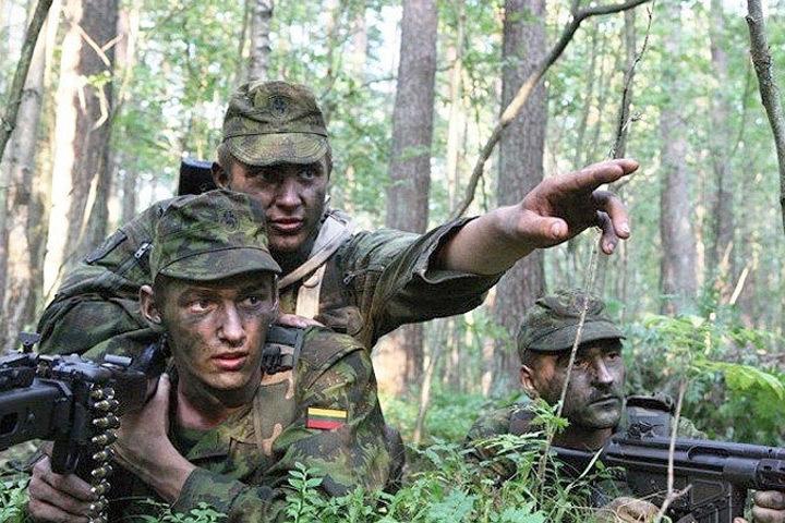 В Сейме Литвы стартует международная конференция по вопросам безопасности и территориальной обороне. Фото: с сайта ru.tsn.ua