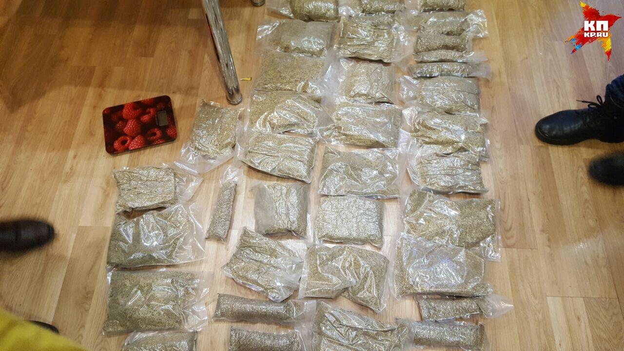 Оперативники изъяли 35 килограммов наркотиков Фото: УФСБ по Свердловской области