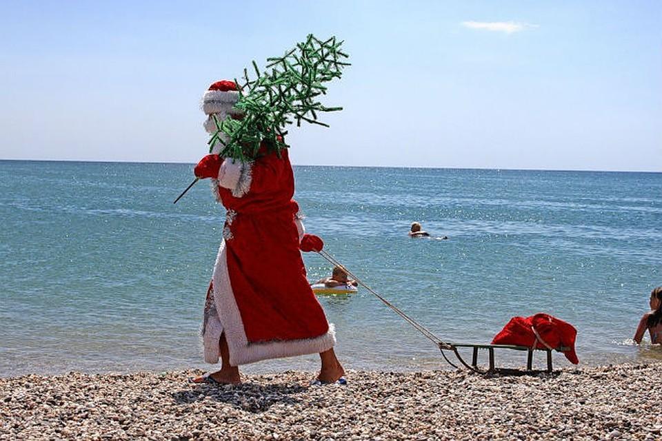 Новый год в крыму отель море