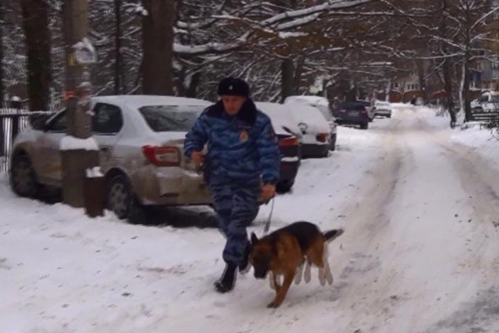 Курянина, нападавшего наженщин вмикрорайоне КЗТЗ, ловили ссобаками
