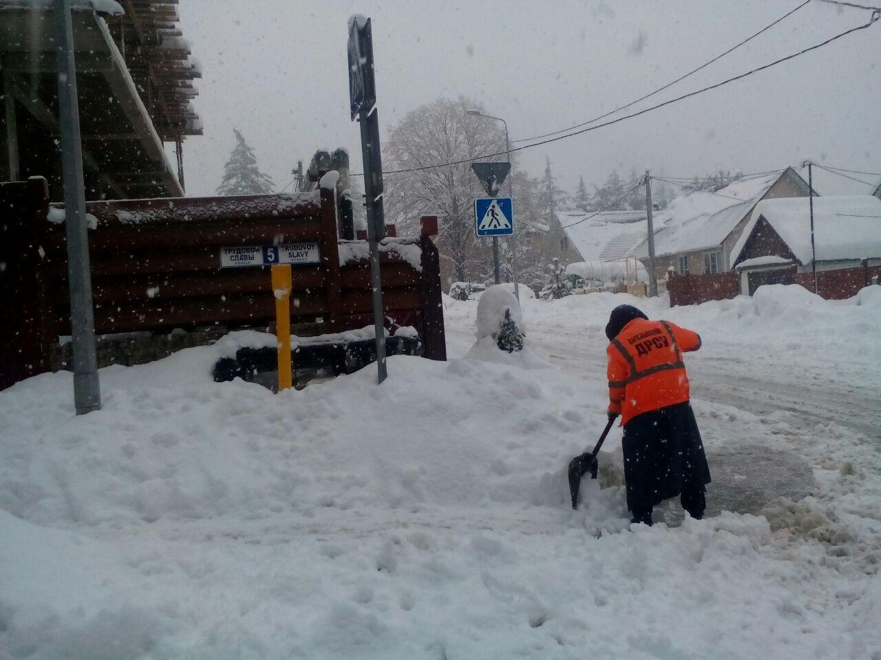 ВСочи выпало рекордное количество снега запоследние 5 лет