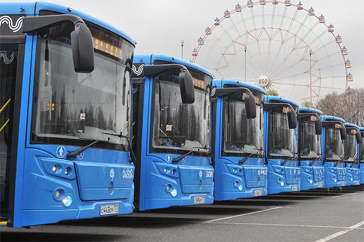 ВПетербурге протестируют египетский автобус класса «люкс»