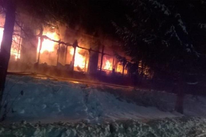 Впожаре вЧистополе погибло 40 животных изомского контактного зоопарка