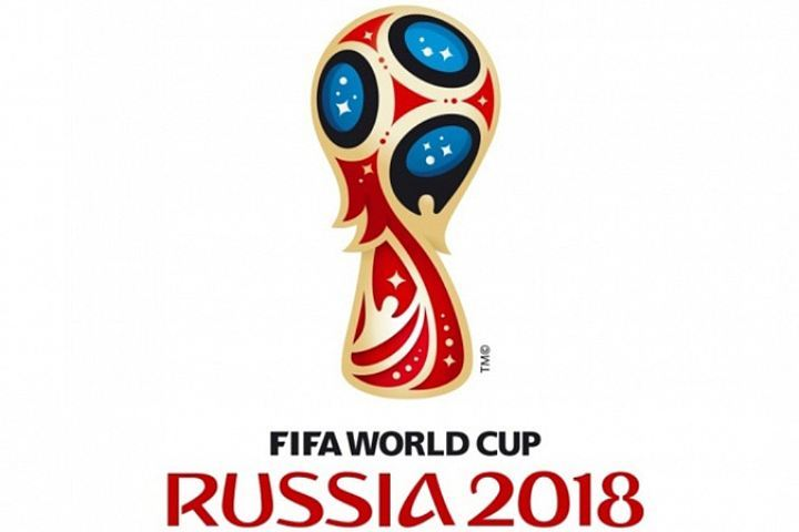 Воронежцы могут записаться вволонтёры начемпионат мира пофутболу 2018 года