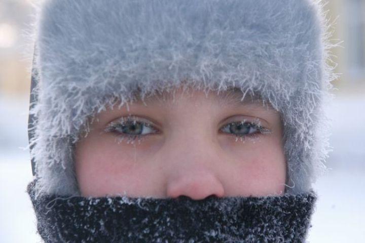 Во второй декаде января ожидается морозная погода.