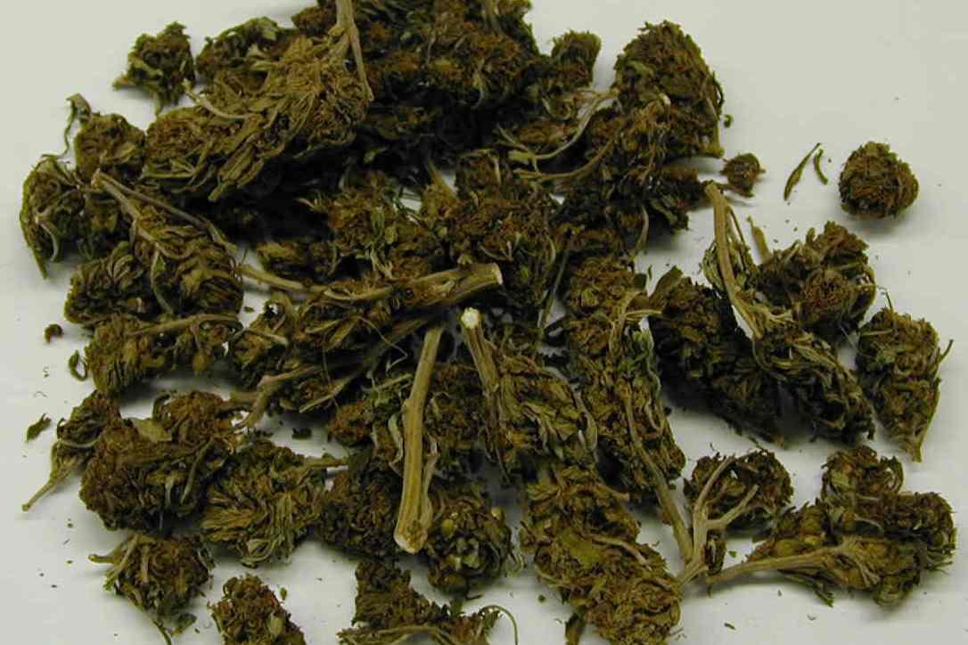 ВКавказском районе двое мужчин склонили школьниц ккурению марихуаны