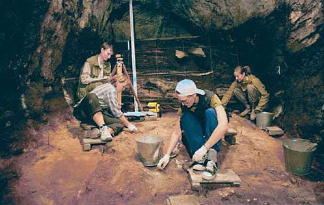 Ученые отыскали наАлтае останки старинного «зеброосла»