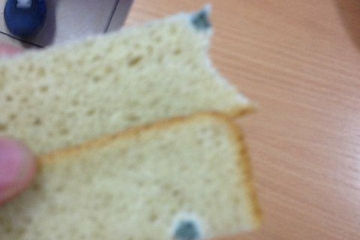 Школьников изНижнего Тагила кормили заплесневелым хлебом