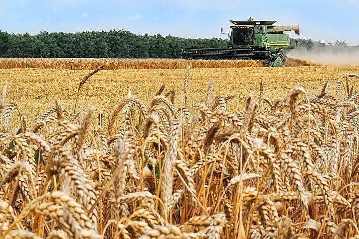 Руководитель Минсельхоза Татарстана: В 2017г. хотим собрать 5 млн тонн зерна