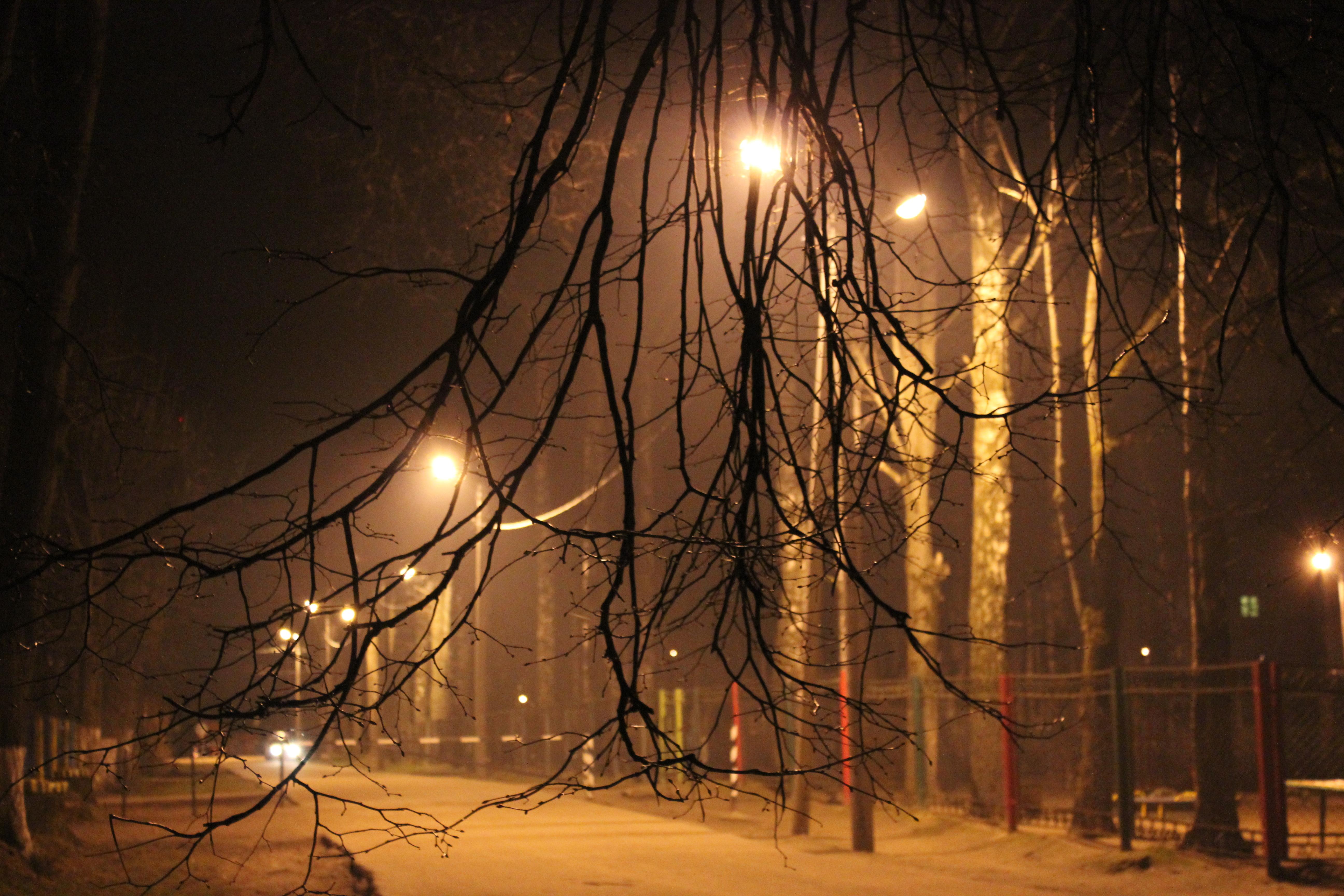 ВСмоленской городской администрации проинформировали о проблеме уличного освещения