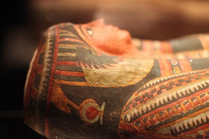 ВСтаврополе откроется выставка «Египетские мумии. Уистоков времен»