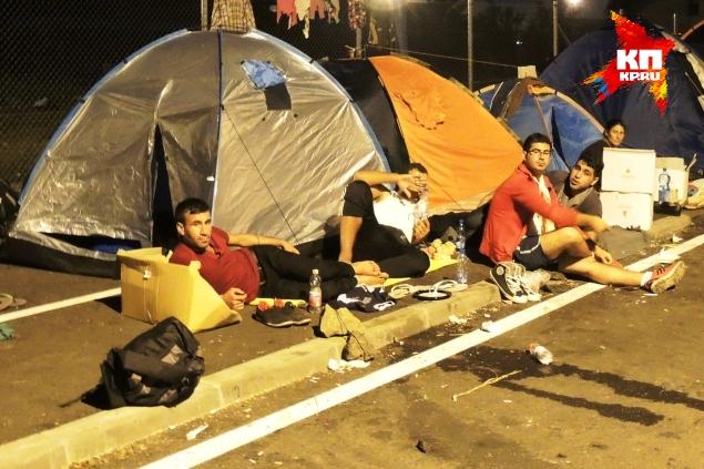 Беженцы ночуют на венгерско-сербской границе. Фото: Дарья АСЛАМОВА