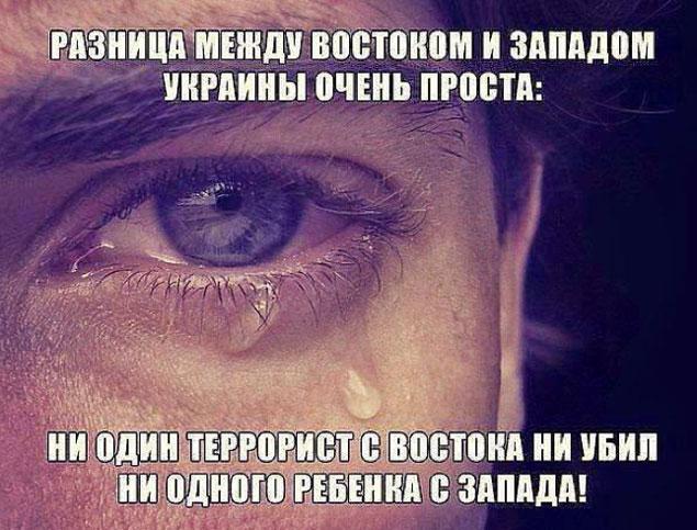 Фото: СОЦСЕТИ