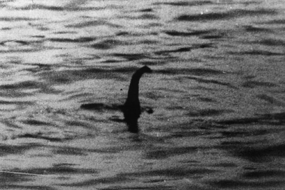 Самый знаменитый снимок Лох-несского чудовища, сделанный в 1934 году.