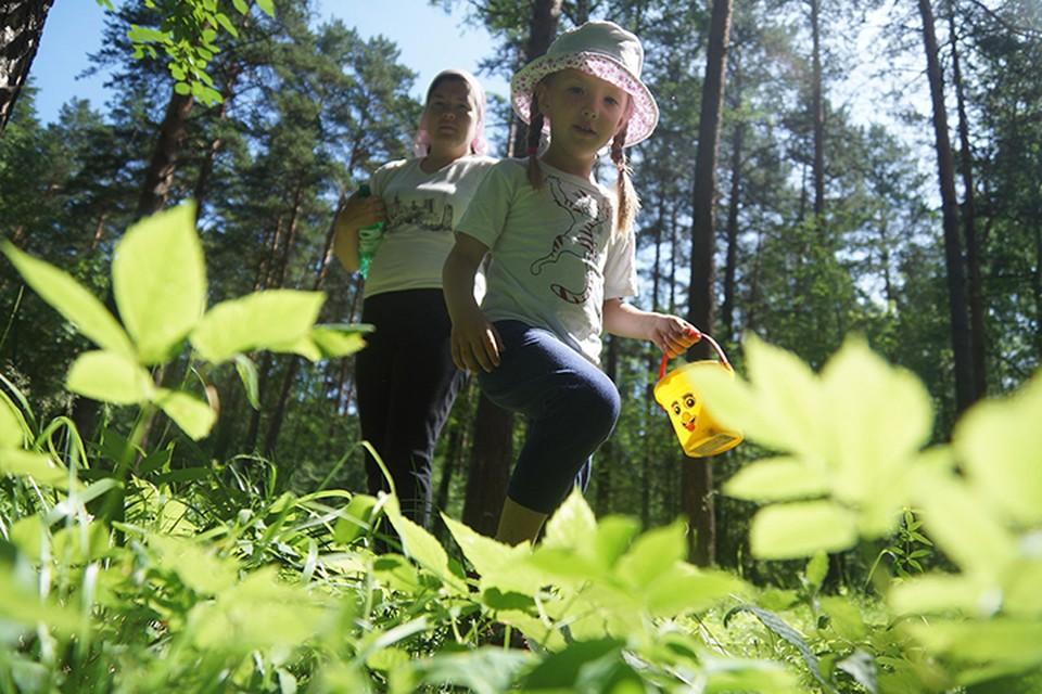 В 70-75% случаев заражение происходит, когда люди выезжают за город, на дачу, посещают лесные массивы