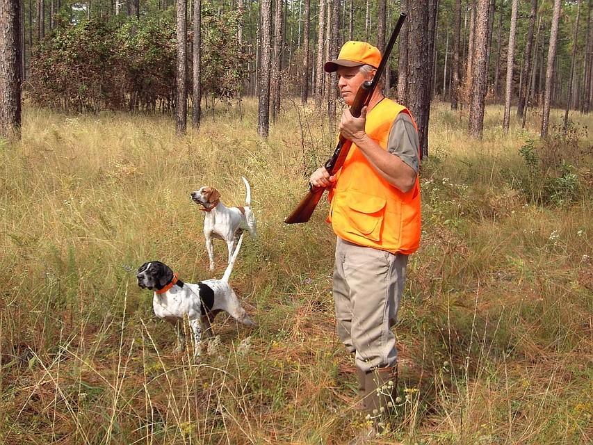 В Смоленской области открывается сезон охоты