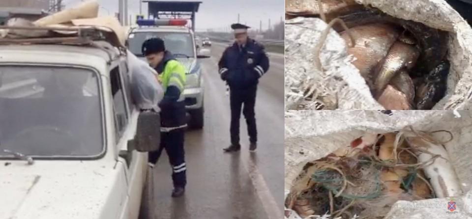 Машину для проверки остановили на посту ДПС в Среднеахтубинском районе, и нашли вот такой улов.