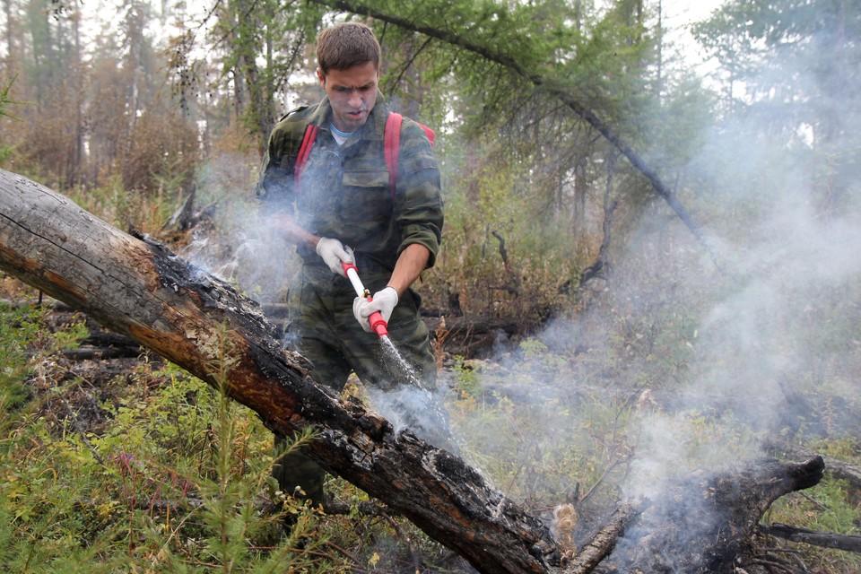 Помощь спасателям - одно из важнейших направлений развития добровольчества в России