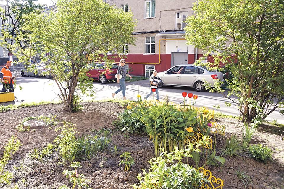 На самом деле никакого криминала в высадке цветов у себя под окнами нет. Главное, чтобы соседи были не против.