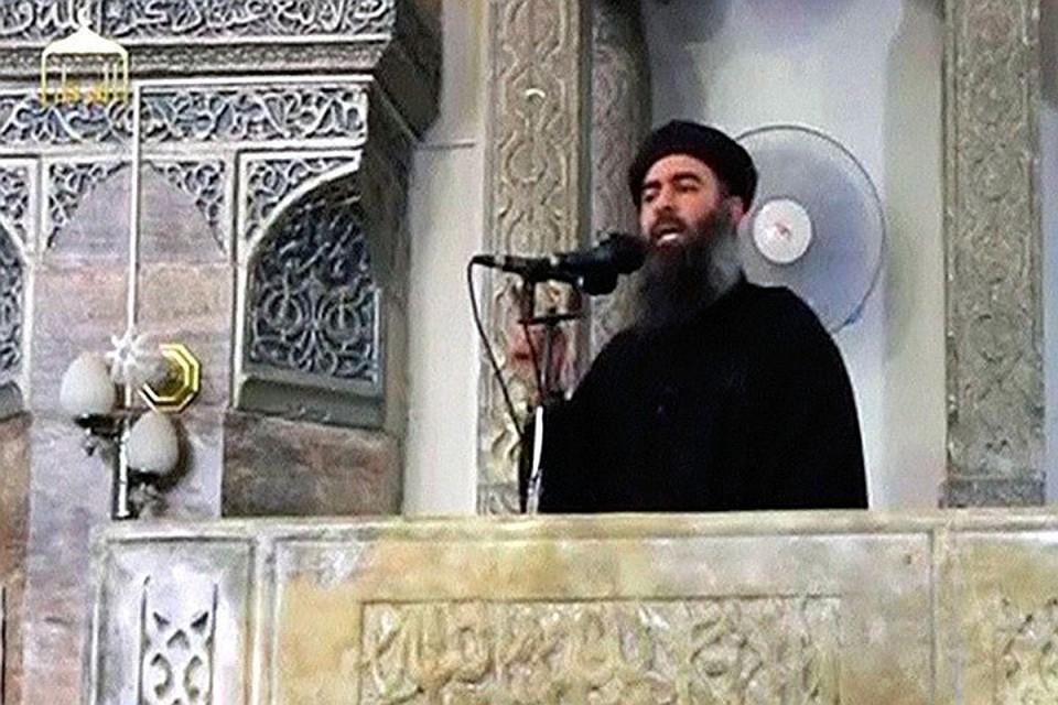 Лидер террористов ИГ аль-Багдади