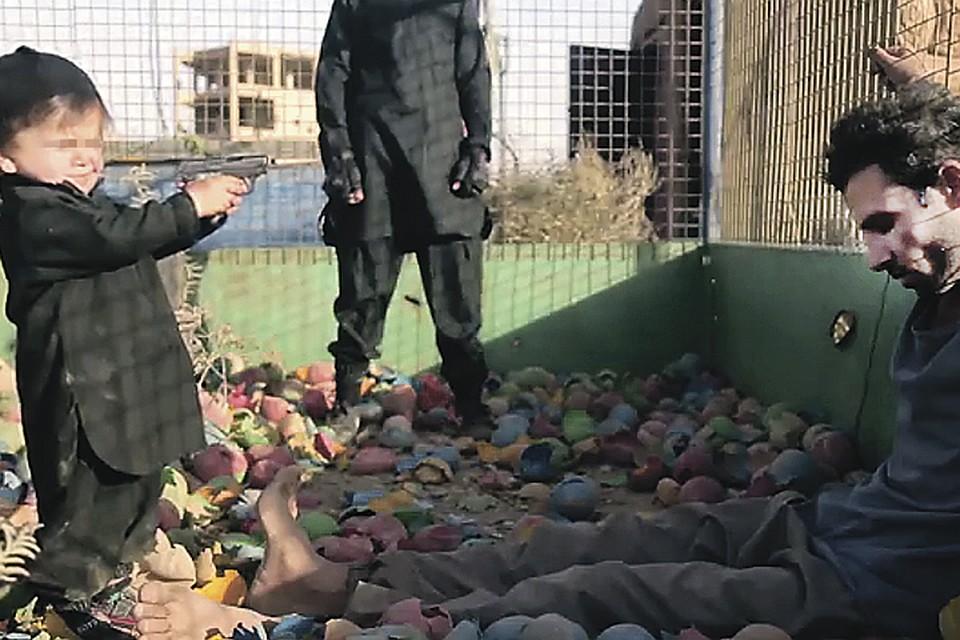 Жуткий кадр из реального видеоролика, где малолетний несмышленыш под руководством взрослого террориста убивает пленника. Так его учат не бояться смерти - ни чужой, ни своей...