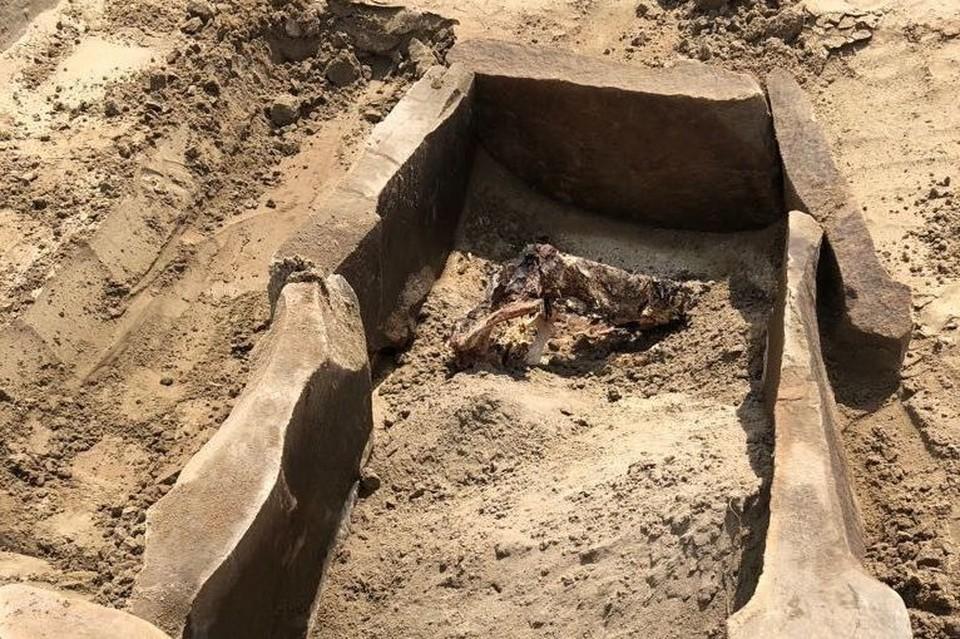Археологи ИИМК РАН нашли древнюю мумию в районе подтопления Саяно-Шушенской ГЭС. Фото: пресс-служба ИИМК РАН