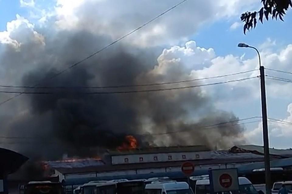 По данным МЧС, угроза распространения пожара на соседние строения отсутствует. Фото: ГУ МЧС России