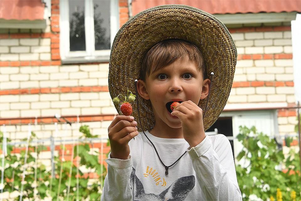 Жара в Москве идеальна для созревания помидоров, малины, смородины