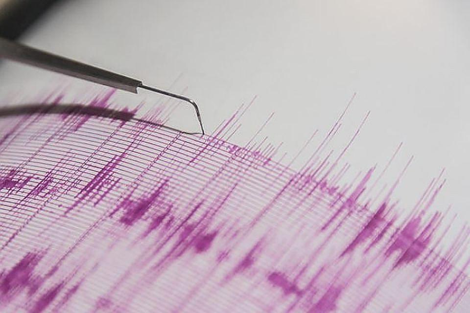 Землетрясение в Индонезии: на горе Ринджани заблокированы свыше 500 альпинистов