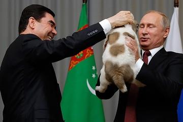 Меч и тигр для президента: Какие подарки дарили Владимиру Путину на дни рождения