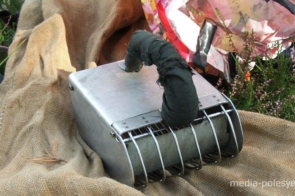 Украинцев оштрафовали не только за нарушение госграницы, но и за незаконный способ сбора ягод. Фото: media-polesye.by.