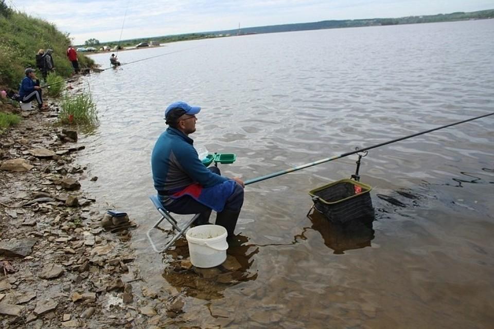 Любителям-рыболовам запретят ловить сверх суточной нормы