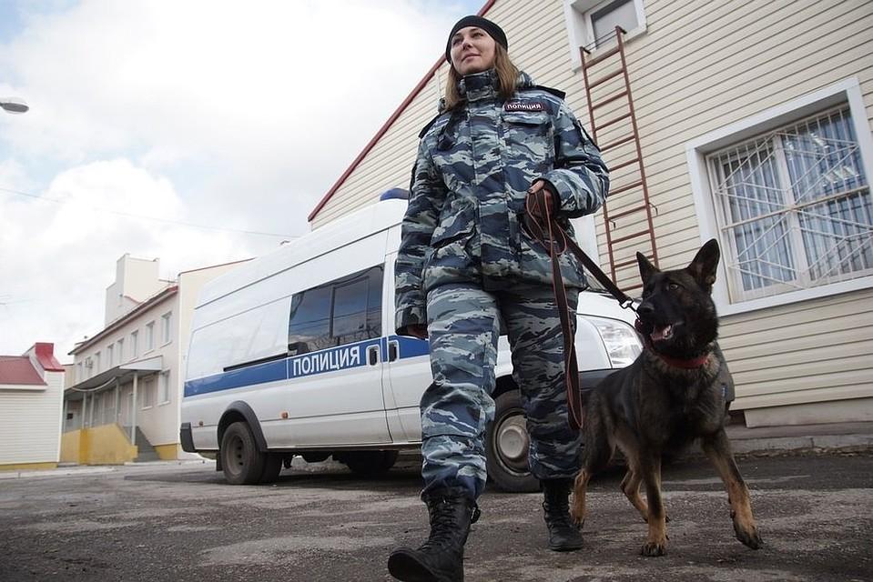 Там бомба!»  в Самаре эвакуировали посетителей ТРК «Вива Лэнд» 685672b38e5