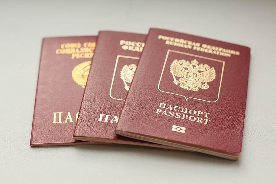 В России может появиться мобильное приложение с паспортными данными.