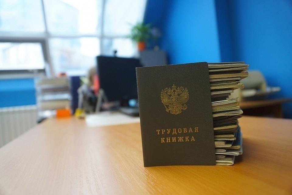Минтруд внес в правительство России проект закона об электронных трудовых книжках