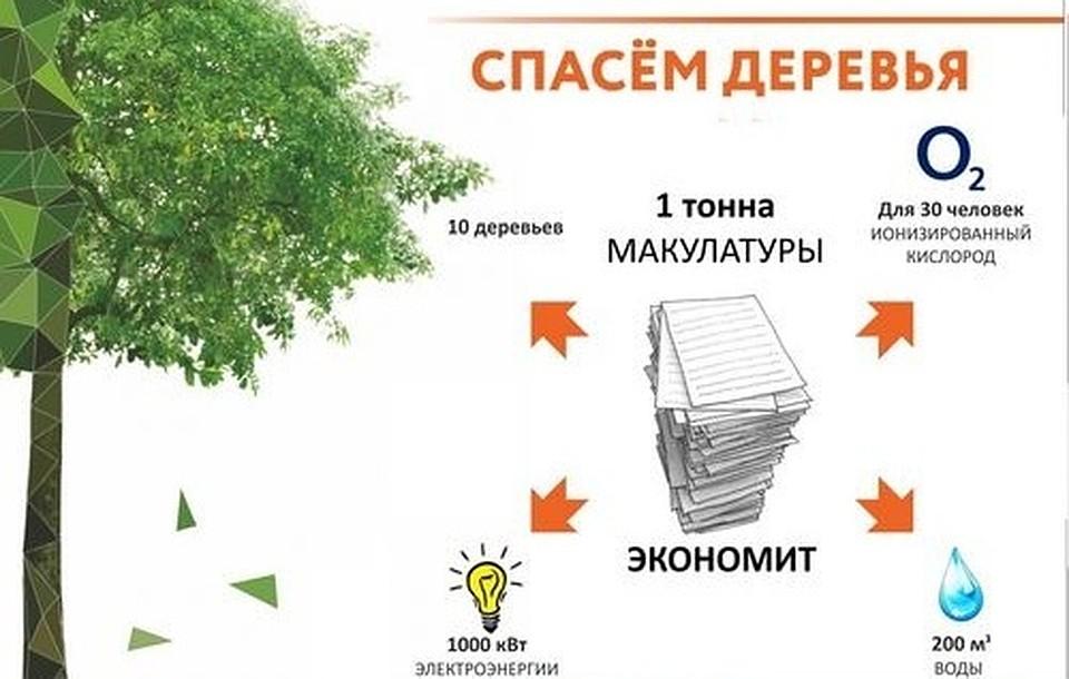 1 тонна макулатуры экономит воды утилизация макулатуры оренбург