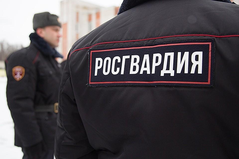 Росгвардия нейтрализовала 47 членов террористических организаций на Северном Кавказе в 2018 году
