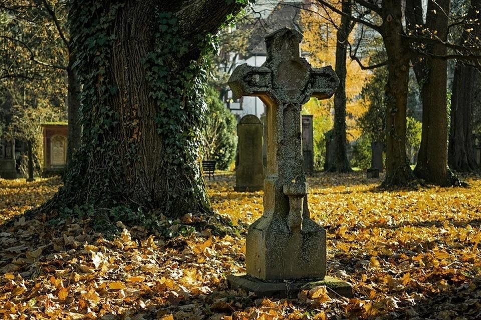 Подростки осквернили кладбище из любопытства и хулиганских побуждений. Фото: pixabay.com.