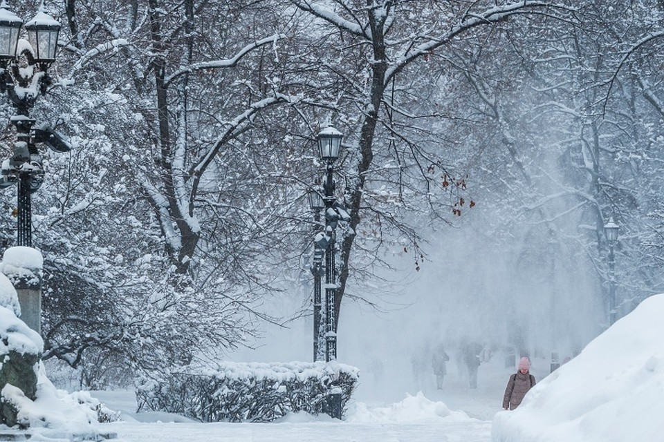Во Франции из-за сильного снегопада 41 тысяча домов остались без электричества