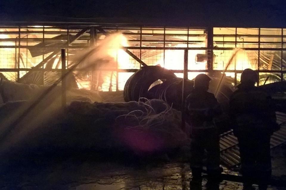 Общая площадь пожара составила 5600 квадратных метров