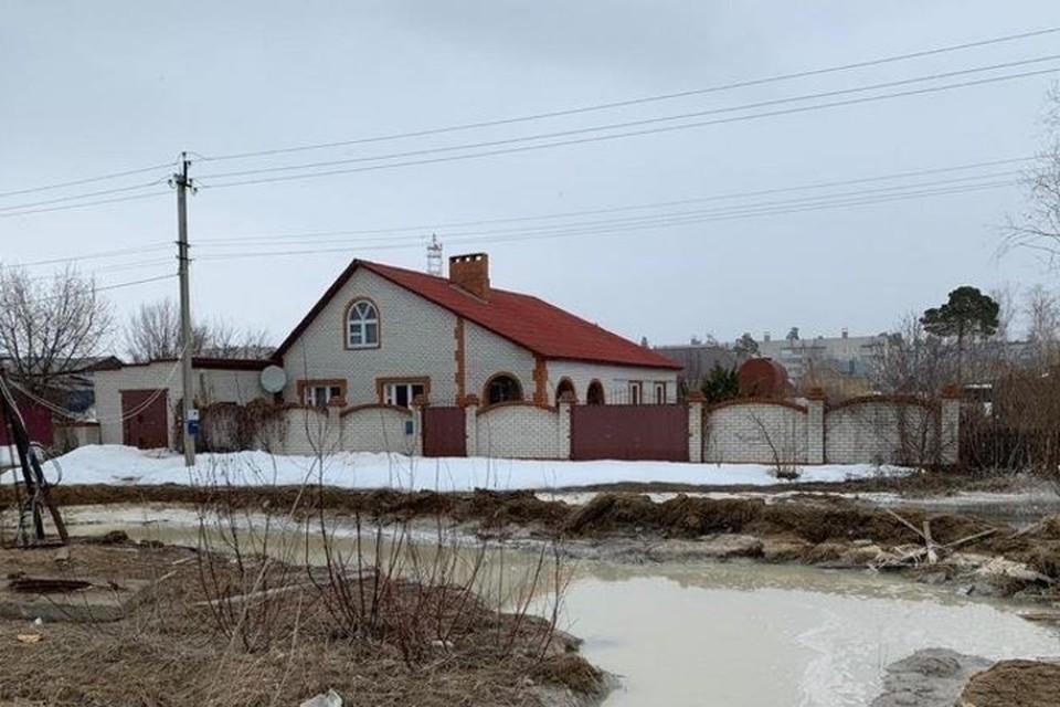Фото: vk.com/davydshina_zoo_pomosch