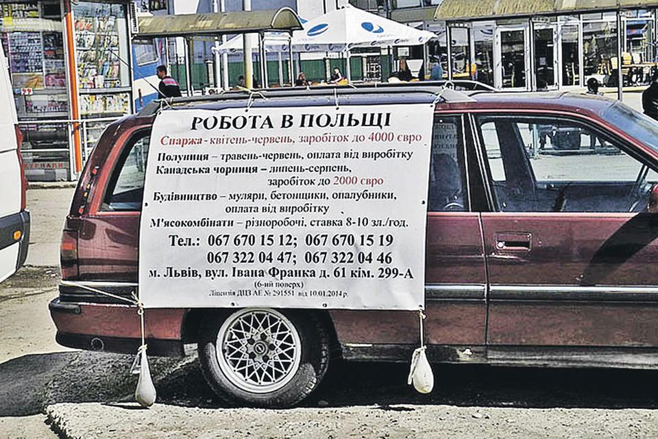Прямо на площадях городов Западной Украины зовут попахать в Польше. В объявлении предлагают завербоваться с апреля по июнь на сбор спаржи, с мая по июнь - на сбор клубники, с июля по август - на сбор черники и круглогодично - на стройки и работу на мясокомбинатах.