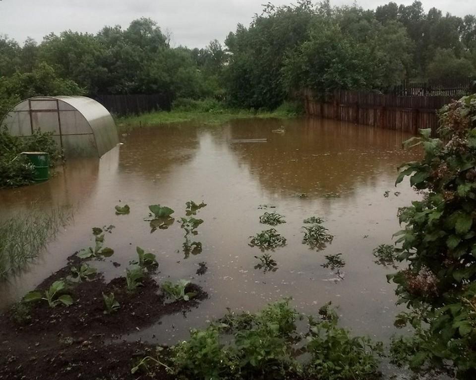 Дожди затопили огороды в Нижнеудинске Иркутской области