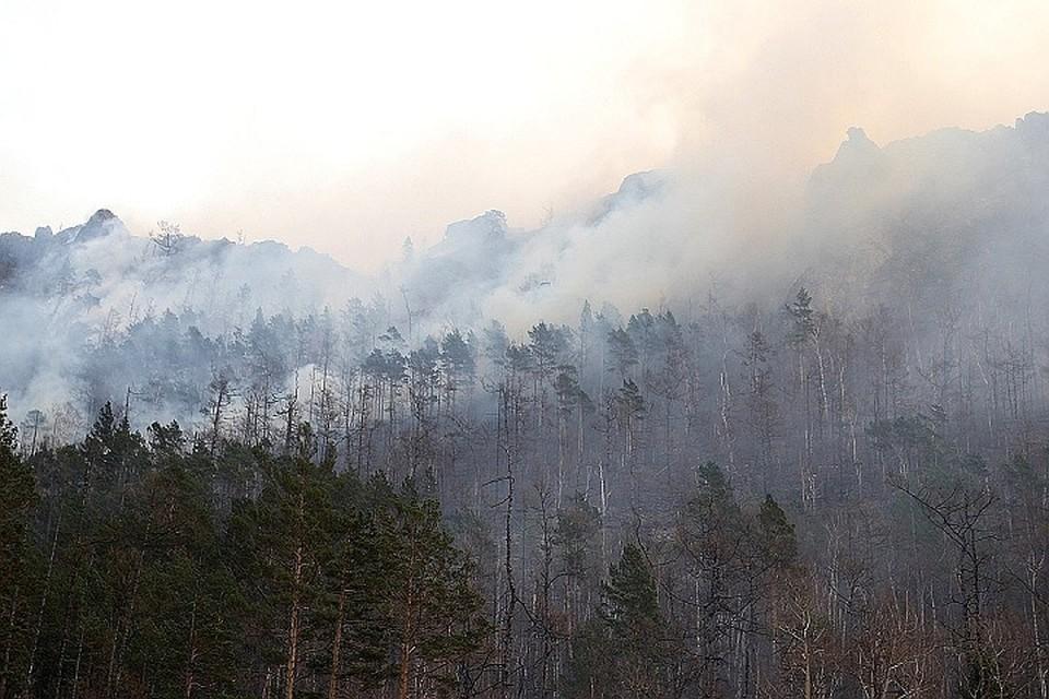 Лесные пожары в Иркутской области: горит почти 60 тысяч гектаров тайги, в четырех районах введен режим ЧС.