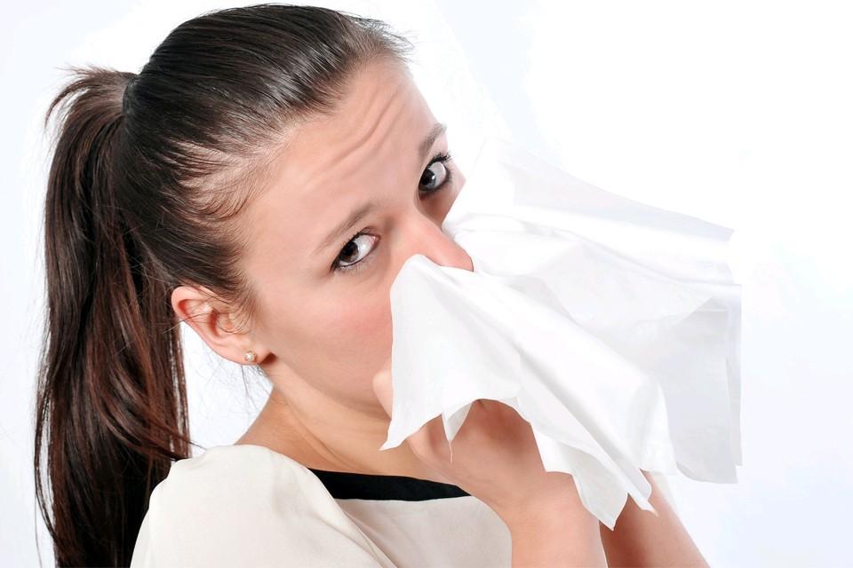 В середине июля больше всего пыльцы на юге и юго-востоке Московской области.